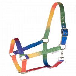 Licol nylon cheval Arc en ciel Waldhausen