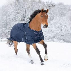 Couverture cheval hiver Economic 300g Waldhausen - Le Paturon