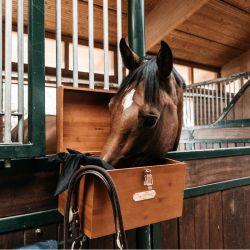 Boîte de pansage Grooming Deluxe Tack Box cheval - Le Paturon