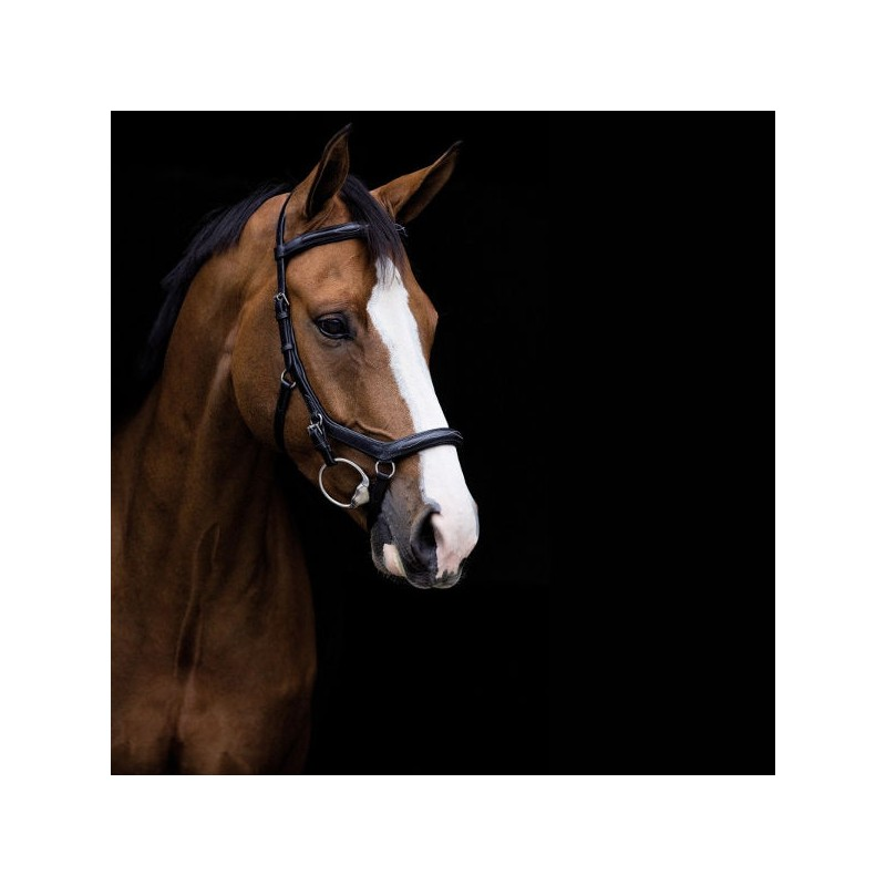 1 Bridon anatomique Micklem Rambo Competition Deluxe Horseware