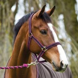 2 licol cheval nylon matelassé amigo, horseware, licol cheval, le paturon