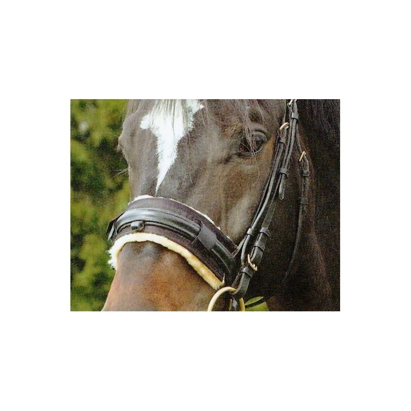 1 Christ, équitation, meilleure, protection, muserolle, cheval, mouton, Le Paturon