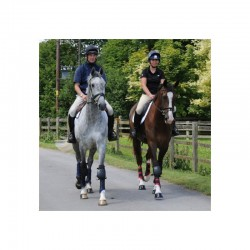 2 Protège genou cheval, Woof Wear, Protection cheval, genoux