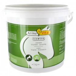 1 Algues Cheval ,Animavital,Sélection Compléments cheval