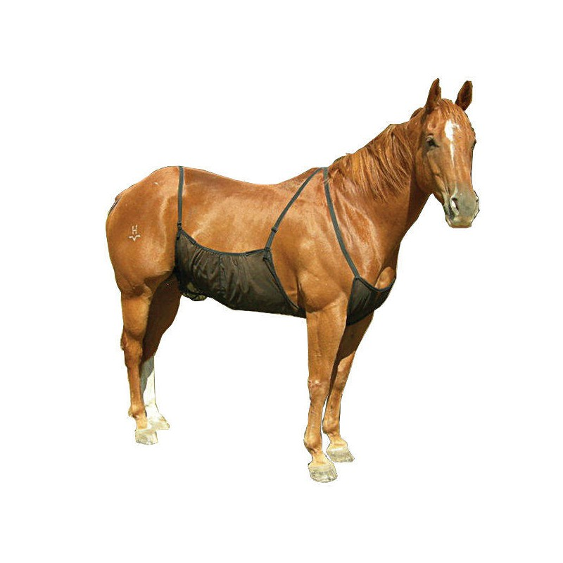 1 Belly Guard Protection Ventre Cheval : Equipement Cheval Cashel
