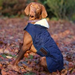 1 Couverture chien, Kentucky - Le Paturon
