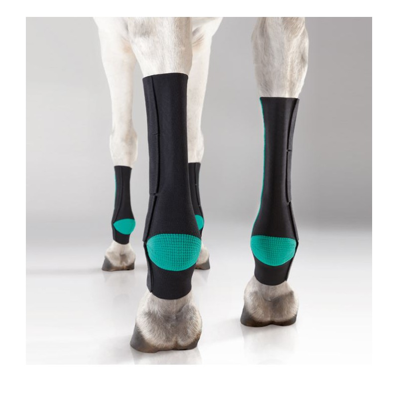 1 EquiCrown Active Compression Cheval ,EquiCrown,Protection cheval