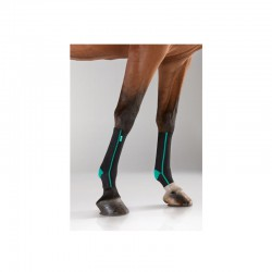 2 EquiCrown Active Compression Cheval ,EquiCrown,Protection cheval