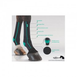 3 EquiCrown Active Compression Cheval ,EquiCrown,Protection cheval
