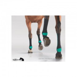 4 EquiCrown Active Compression Cheval ,EquiCrown,Protection cheval