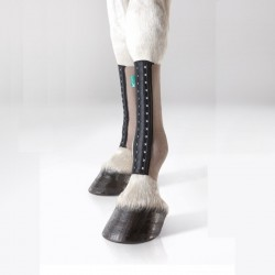 1 EquiCrown Fit Silver Compression Cheval ,EquiCrown,Protection cheval