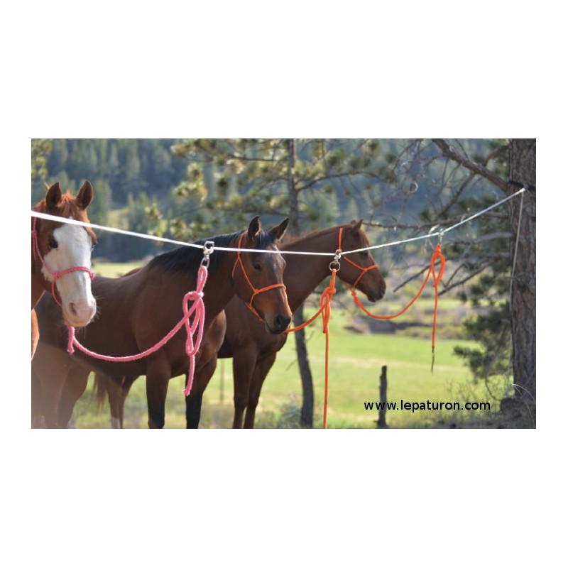 1 Kit attache 4 chevaux ,Cashel,Sangle et Longe cheval