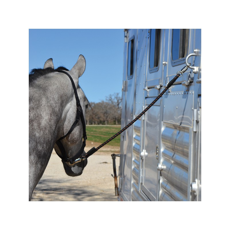 1 Longe élastique double attache ,Cashel,Sangle et Longe cheval