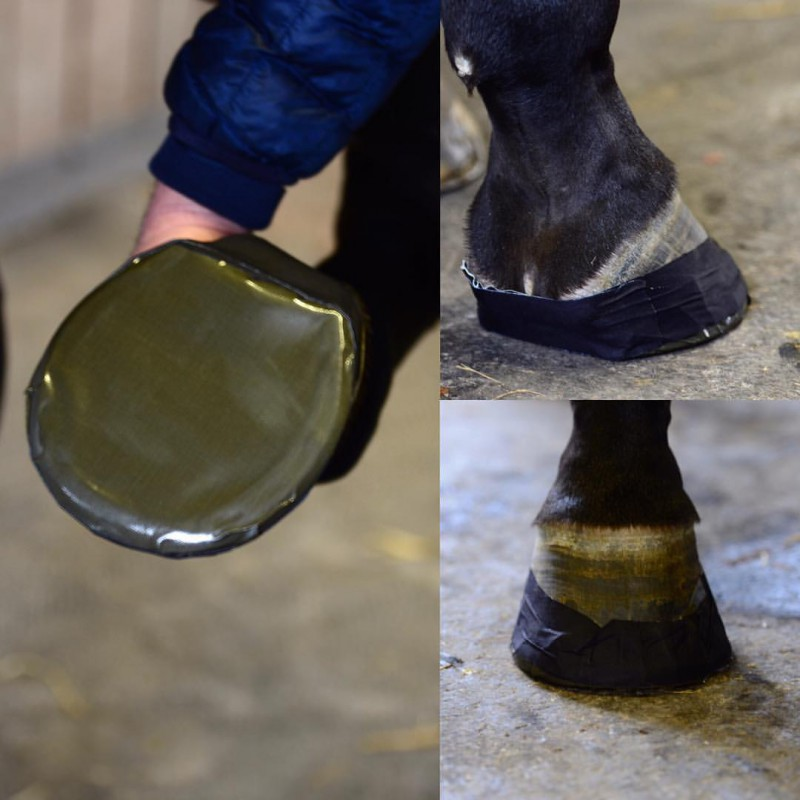 1 Pad protection sole sabot cheval,Kentucky,Protection cheval