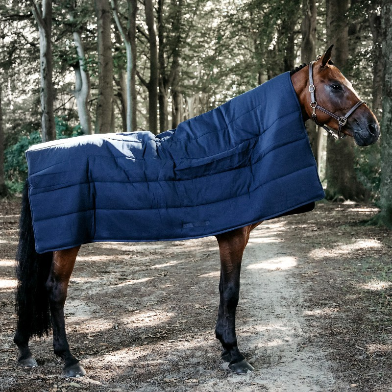 1 Sous couverture cheval : Equipement Cheval Kentucky