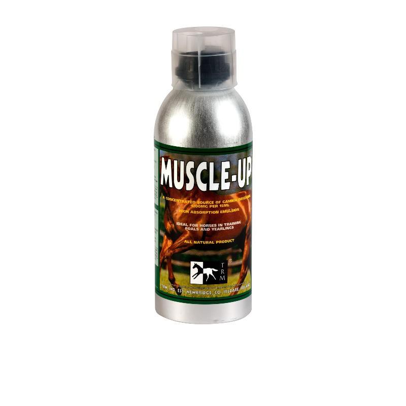 1 Muscle Up TRM, Cheval Body Builder - Le Paturon