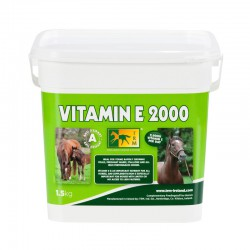 1 Vitamin E 2000 TRM, Tendon cheval - Le Paturon