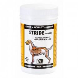 1 Stride TRM, Articulation chien - Le Paturon