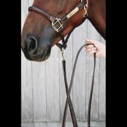 2 Longe 270 cm Présentation chaine Cuir Kentucky,Kentucky,Licol cheval et Muselaine