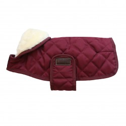 2 Manteau chien bordeaux, Kentucky - Le Paturon