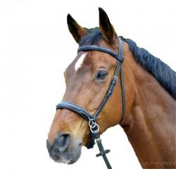 1 Bridon sans mors cuir - Bridon cheval - Ethologie - Le Paturon