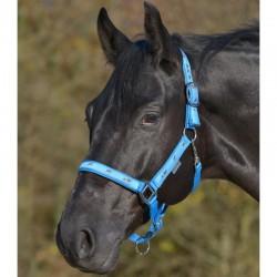 3 Licol nylon, petite tête de cheval, Licol Waldhausen - Le Paturon