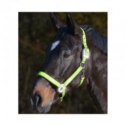3 Licol fluo réfléchissant cheval Reflex : Licol sécurité cheval Waldhausen