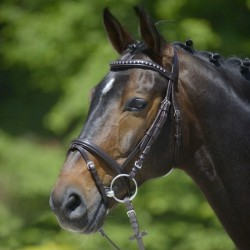 1 Bridon cheval cuir muserolle combinée Clincher,Star,Bridon cheval