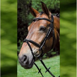 3 Bridon cheval cuir muserolle combinée X-Line Santander,Waldhausen,Bridon cheval