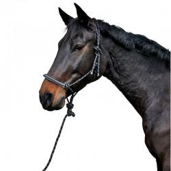 1 Licol éthologique avec longe : Cheval Naturellement - Licol cheval