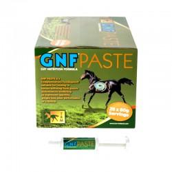 1 GNF Paste cheval désordres gastriques 28x80g : Complément Cheval TRM - Le Paturon