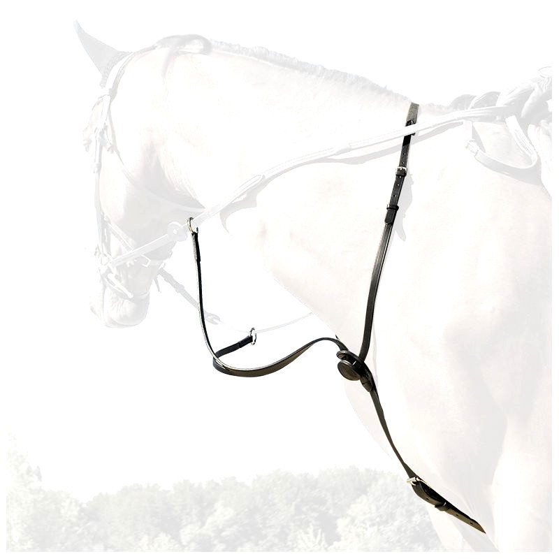 1 Martingale cuir cheval, Martingale cheval, IHWT, Le Paturon