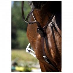 2 Martingale cuir cheval, Martingale cheval, IHWT, Le Paturon