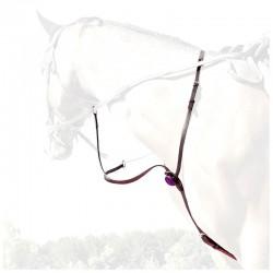 1 Martingale en cuir avec collier, Martingale coloré, IHWT, Le Paturon