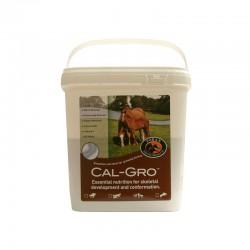 1 Cal Gro, Foran, complément minéral cheval, Le Paturon