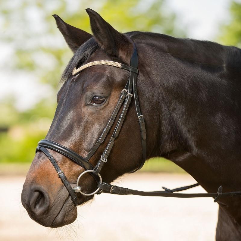 1 Bridon cheval Goldrush, Bridon cuir muserolle combinée, Le Paturon - Waldhausen