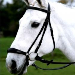 1 Bridon cheval Hannover Waldhausen, Bridon muserolle allemande, Le Paturon - Waldhausen