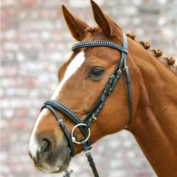 1 Bridon cheval Silverstar Waldhausen, Bridon muserolle combinée, Le Paturon - Waldhausen