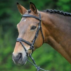 2 Bridon cheval Alicante Waldhausen, Bridon cuir muserolle pullback, Le Paturon - Waldhausen