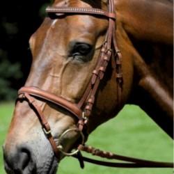 2 Bridon Pamplona Waldhausen, Bridon cheval cuir muserolle pull-back, Le Paturon - Waldhausen