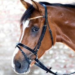 1 Bridon Lovely Waldhausen, Bridon cheval cuir muserolle combinée, Le Paturon - Waldhausen