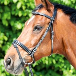 1 Bridon Apart Waldhausen, Bridon cheval cuir muserolle combinée, Le Paturon - Waldhausen