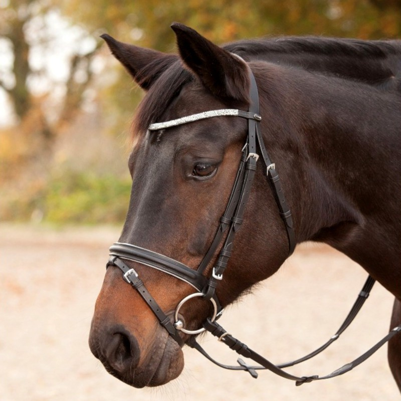 1 Bridon Silverlight Waldhausen, Bridon cheval cuir muserolle combinée, Le Paturon - Waldhausen