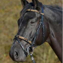 1 Bridon camouflage Waldhausen, Bridon cheval cuir muserolle combinée, Le Paturon - Waldhausen