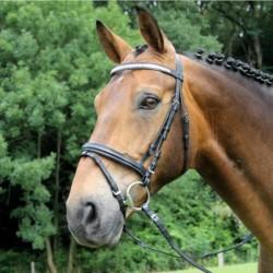 1 Bridon Brillant Waldhausen, Bridon cheval cuir muserolle combinée, Le Paturon - Waldhausen