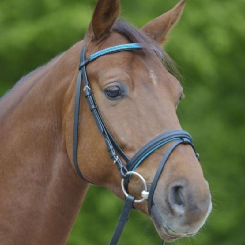 1 Bridon Bonny Waldhausen, Bridon cheval cuir muserolle combinée, Le Paturon - Waldhausen