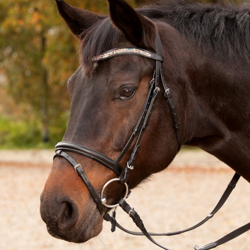1 Bridon Candy Waldhausen, Bridon cheval cuir muserolle combinée, Le Paturon - Waldhausen