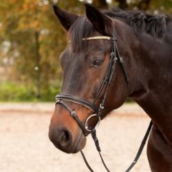 1 Bridon Goldstück Waldhausen, Bridon cheval cuir muserolle combinée, Le Paturon - Waldhausen