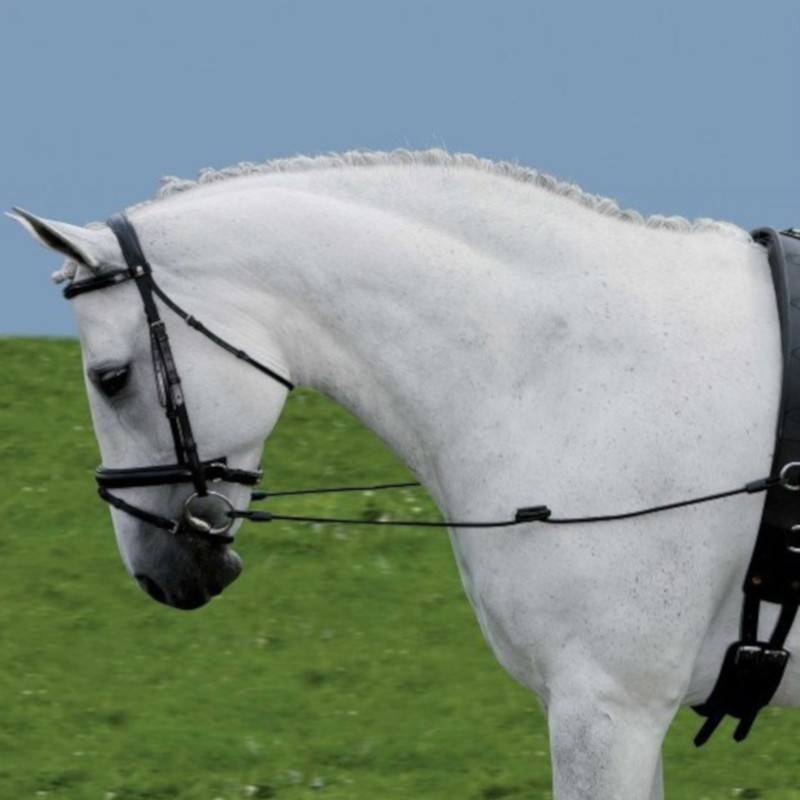 1 Rênes de côté élastique, Waldhausen, Rênes de côté élastique cheval
