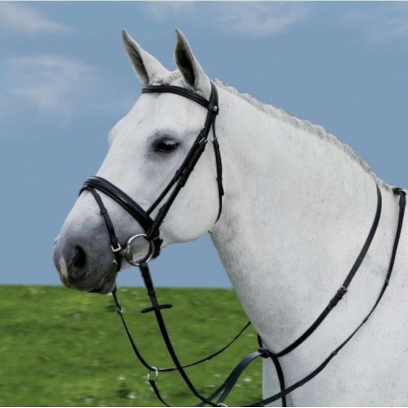 1 Martingale à anneaux, Martingale cheval, Le Paturon - Waldhausen